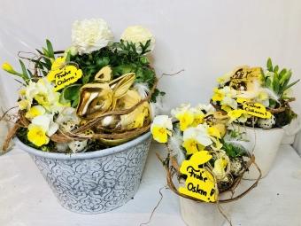 Schalen und Körbe bepflanzt