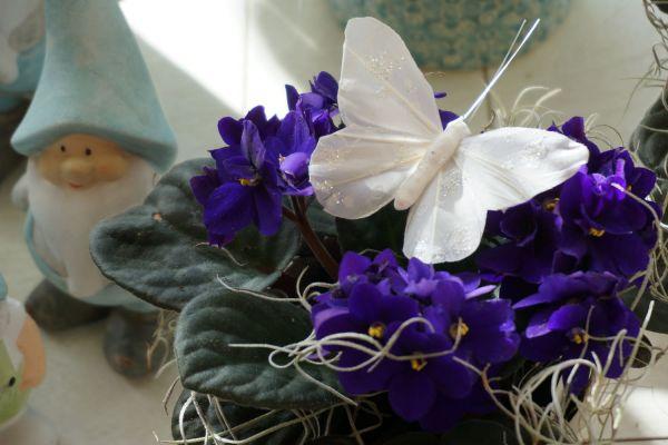 Claudias-Blumenzauber-Vomp-Muttertag-Valentinstag-7