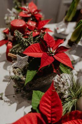 Claudias-Blumenzauber-Advent-Weihnachten-Florist-Tirol-45