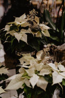 Claudias-Blumenzauber-Advent-Weihnachten-Florist-Tirol-51